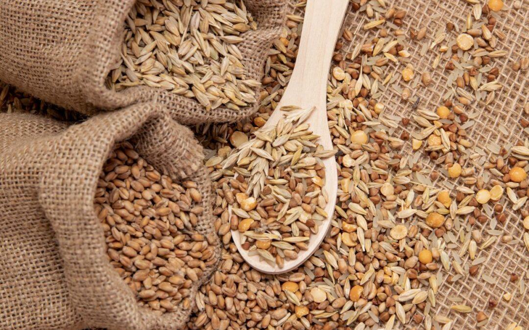 Cereali in chicco: quali sono e perché mangiarli
